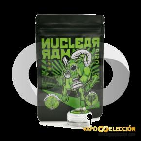 NUCLEAR RESISTANCES RAM CHERNOBYL COILS 0.12OHM 2PCS | CHARROCOILS |* NICOTINE-FREE PRODUCT *|