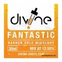 CHEFS FLAVOURS DIVINE SHOTS FANTASTIC 30 ML